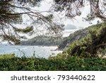 the sea through the green... | Shutterstock . vector #793440622
