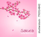 a branch of blooming cherry... | Shutterstock .eps vector #793514842