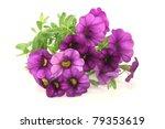 A Bouquet Of Purple Petunias O...