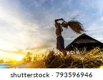farmer threshing rice farmer...   Shutterstock . vector #793596946