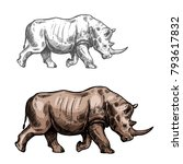 rhinoceros wild animal sketch