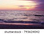 caspersen beach south venice at ... | Shutterstock . vector #793624042
