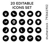 mammal icons. set of 20... | Shutterstock .eps vector #793661902