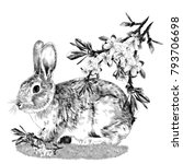 Stock vector bunny sitting on the grass next to the branches of the apple tree sketch vector graphics monochrome 793706698