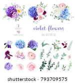Stock vector violet purple and blue hydrangea pink rose and ranunculus white chrysanthemum carnation plum 793709575