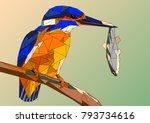 bird kingfisher on a branch...   Shutterstock .eps vector #793734616