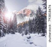 majestic mountain winter... | Shutterstock . vector #793818676