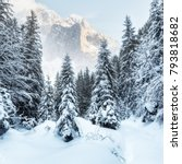 wonderful wintry landscape.... | Shutterstock . vector #793818682