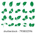 leaf icons. collection of 20... | Shutterstock .eps vector #793832596