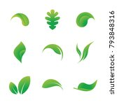 collection of 9 leaf icons... | Shutterstock .eps vector #793848316