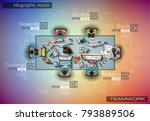 infograph background template... | Shutterstock .eps vector #793889506