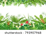 horizontal line floral seamless ...   Shutterstock .eps vector #793907968
