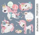 cute unicorn girl  princess... | Shutterstock .eps vector #793913305