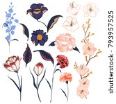 set of hand drawing floral... | Shutterstock .eps vector #793957525
