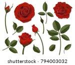 a set of flower parts.... | Shutterstock .eps vector #794003032