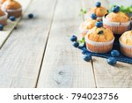 blueberries muffins or cupcakes ... | Shutterstock . vector #794023756