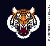 tiger embroidery design. | Shutterstock .eps vector #794101762