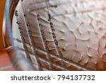 colony characteristics of...   Shutterstock . vector #794137732