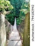 lynn canyon park. canada | Shutterstock . vector #794182942