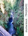 lynn canyon park. canada | Shutterstock . vector #794183452