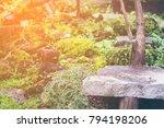 hot springs in national park... | Shutterstock . vector #794198206