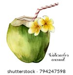 watercolor coconut with... | Shutterstock . vector #794247598