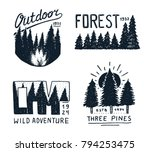 coniferous forest  mountains... | Shutterstock .eps vector #794253475