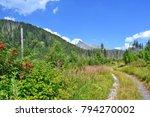 summer mountain landscape ... | Shutterstock . vector #794270002