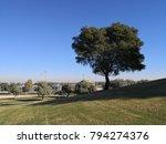 aspire park in doha city  qatar. | Shutterstock . vector #794274376