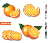 set of orange vector
