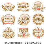 wheat grain product and bread...   Shutterstock .eps vector #794291932