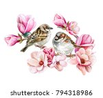 birds of sparrows sitting on a... | Shutterstock . vector #794318986
