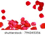 Stock photo red rose petals isolated on white background 794345356