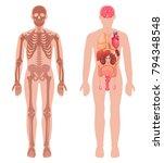 human anatomy set with skeleton ... | Shutterstock .eps vector #794348548