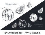 watermelon   detailed hand... | Shutterstock .eps vector #794348656