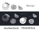 orange   grapefruit   detailed... | Shutterstock .eps vector #794349316
