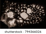 bright beautiful drawn texture... | Shutterstock . vector #794366026