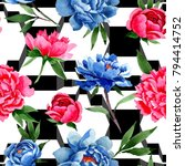 wildflower red and blue peonies ...   Shutterstock . vector #794414752
