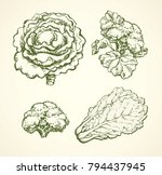 Ripe Raw Fresh Brassica...