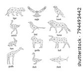 set of abstract animal... | Shutterstock . vector #794493442