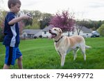 boy playing with her dog... | Shutterstock . vector #794499772