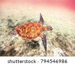 digital illustration   sea... | Shutterstock . vector #794546986