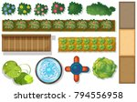 top view of plants and pond in... | Shutterstock .eps vector #794556958