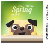 hello spring season background... | Shutterstock .eps vector #794678452