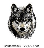 black and white vector drawing... | Shutterstock .eps vector #794734735