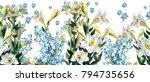 floral horizontal seamless... | Shutterstock . vector #794735656