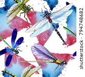 exotic dragonfly wild insect... | Shutterstock . vector #794748682