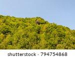 the jiu valley from hunedoara... | Shutterstock . vector #794754868