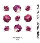 red cabbage pattern isolated...   Shutterstock . vector #794760568