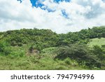 beautiful vibrant background... | Shutterstock . vector #794794996